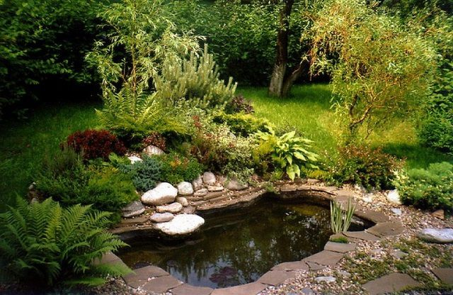 Very nice it can look a little pond