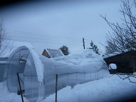 Greenhouse of low-quality polycarbonate bent due to excessive snow load on the frame