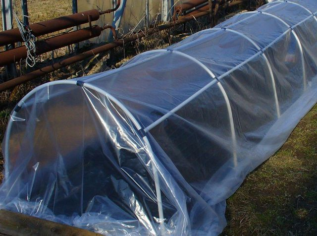 Easy roll bar , cover with plastic wrap