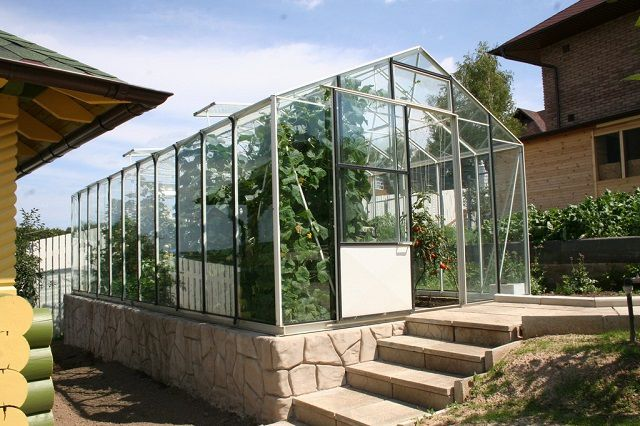 Major greenhouse with a gable roof