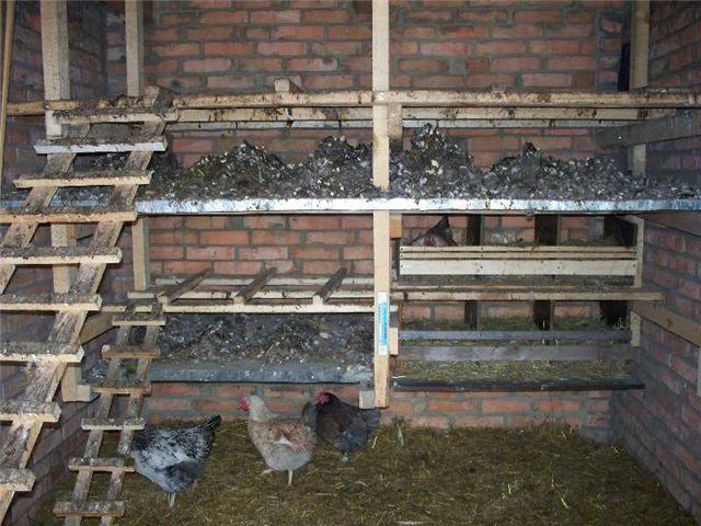 Brick coop will require significant heating costs