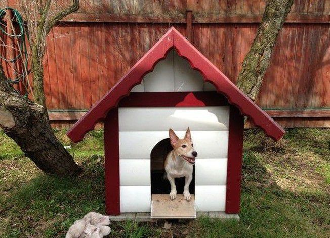 Doghouse with gable roof