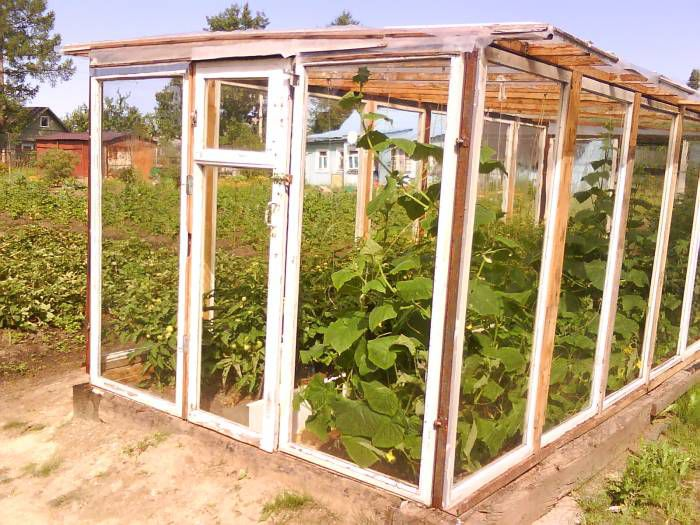 Greenhouse from old window frames