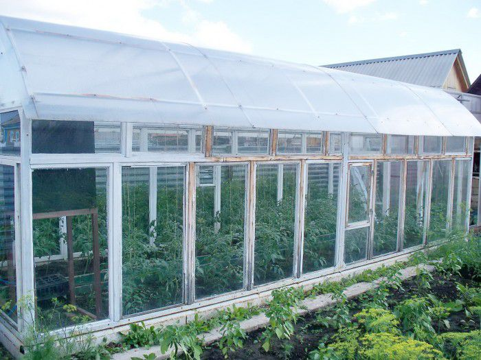 Greenhouse of the window frames and polycarbonate