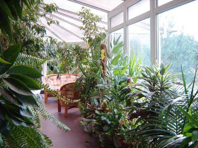 The Winter Garden in the loggia