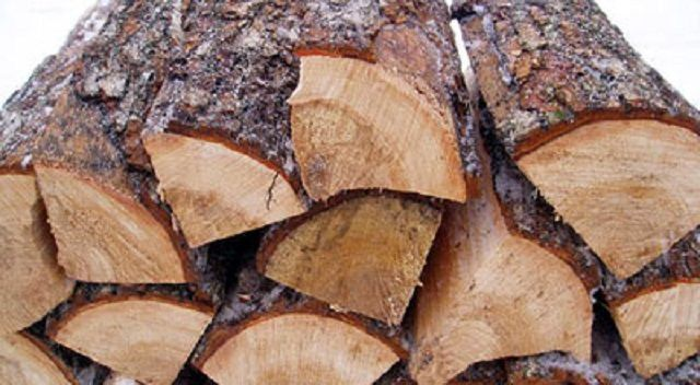 Coniferous wood used for heating is undesirable