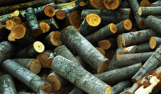 Aspen wood do not give good heat, but it can help to clean the chimney soot