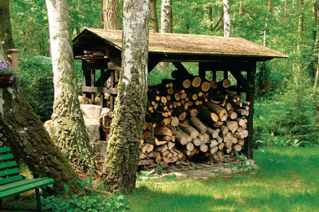 Firewood remain qualitative only if stored properly
