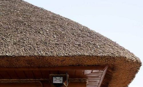 Thatched roof - comfortable, unusual and cheap