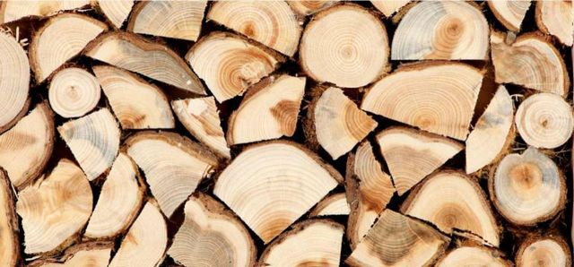 Firewood Fruit trees are best left to cooking