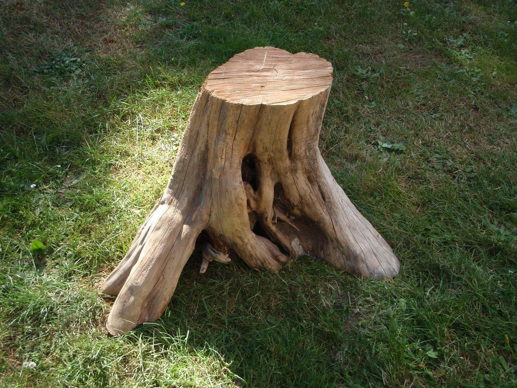 Cooking stump