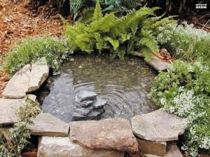 We put on the bottom gravel and enjoy the classic design of decorative ponds