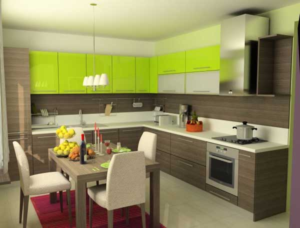 Kitchen Design wenge and lime .Photo 15