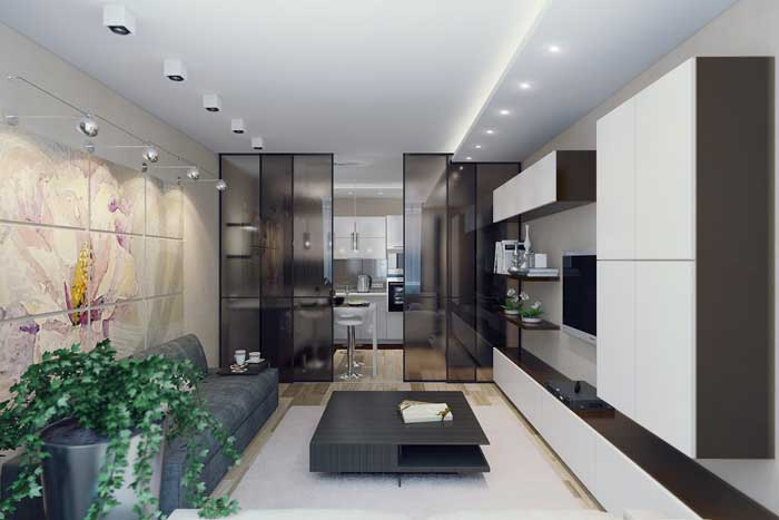Combined kitchen and living area with a partition .Picture 6