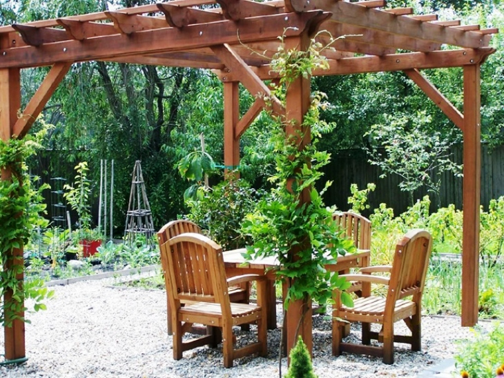 Pergola in the country with their own hands .A photo