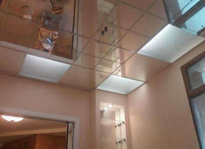 Net mirrored ceiling