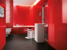 Red tiles and tiles in the bathroom