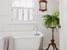 Fern bath room with a window