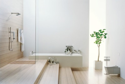 Caring for plants in the bathroom with a window