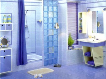 Blue bathroom with glass blocks