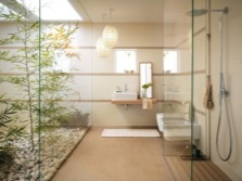 Feng Shui bathroom with shower