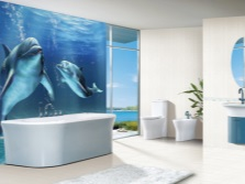 Dolphins in blue bathroom