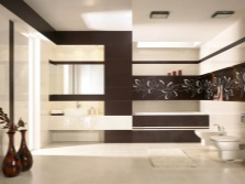 The horizontal black bars in the bathroom - pushing the space