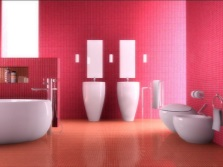 Red and pink bathroom