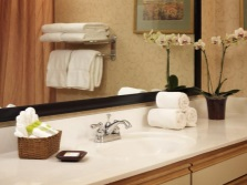 Accessories in combination bathroom