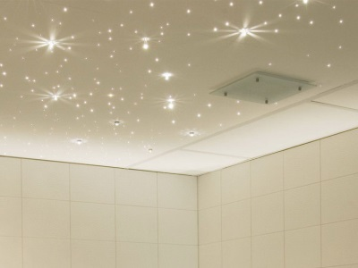 Combined bathroom ceiling