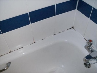 Ways to get rid of mold on the sealant in the bathroom