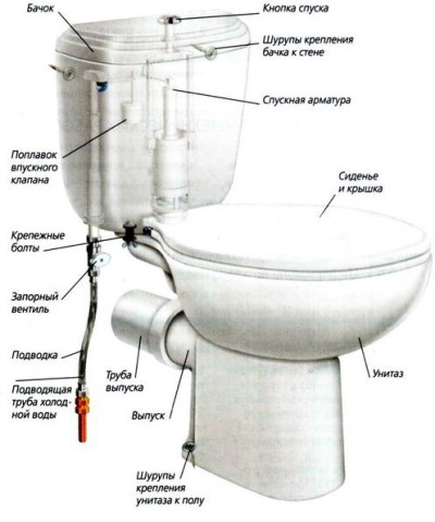 The design of the toilet bowl