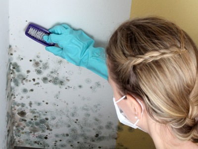 Removing the fungus with bleach