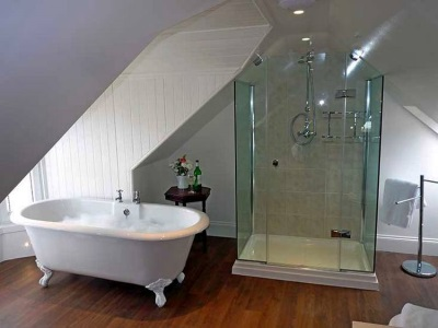 Shower and glass bath in one