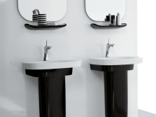 Black Tulip sinks