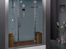 Shower with a steam generator for two