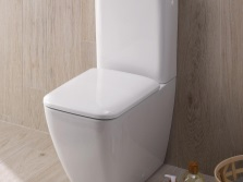 choice of rimless toilet models