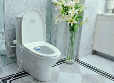 Disadvantages toilets with hygienic shower