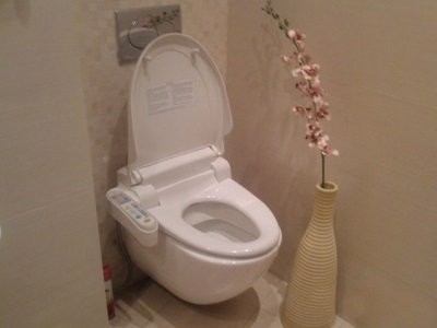 Toilet bowl with a hygienic shower - bidet cover