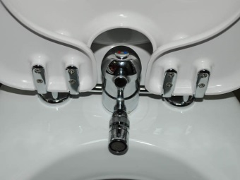 Recommendations for choosing a toilet bowl with a hygienic shower