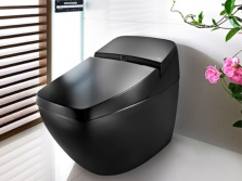 Outdoor black electronic toilet