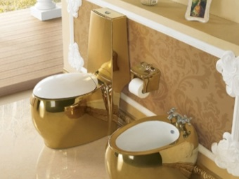 Gold plated Toilets