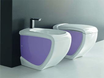 The toilet and bidet purple
