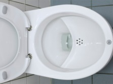 Import toilet with a shelf in a bowl