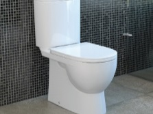 The toilet from the Russian manufacturer Sanita