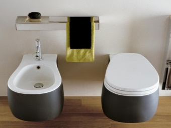 Low hung toilet and bidet unusual shape