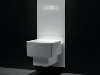 Installation with height adjustable toilet
