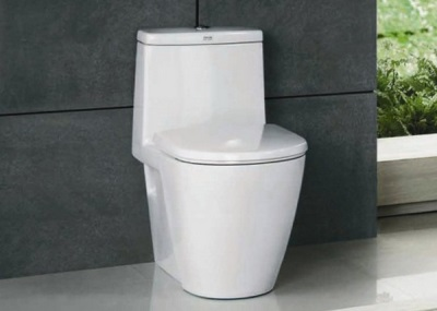 Features - toilet monoblock