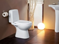 Toilet bowls with vertical outlet