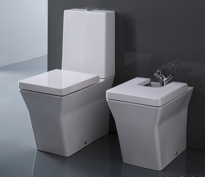 Toilet seat and bidet with microlift